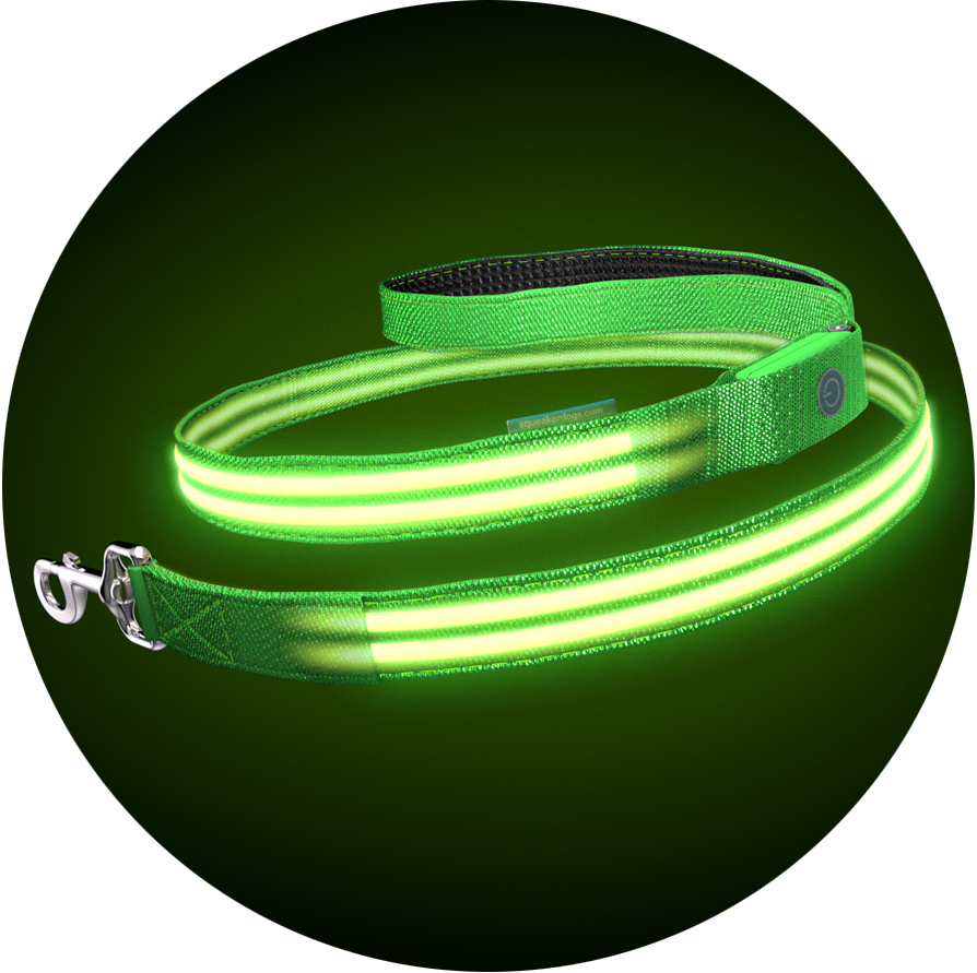 Green Gremlin Poochlight™ Collar + Leash Value Combo