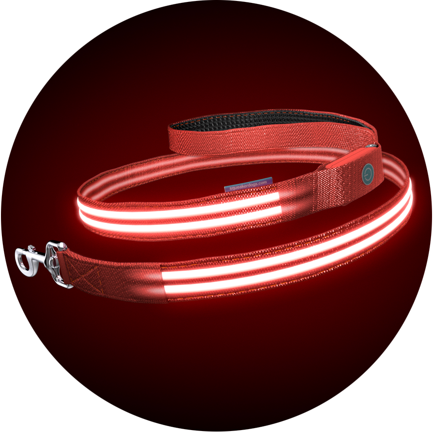 Lava Red Poochlight™ Light Up Flashing Dog Leash