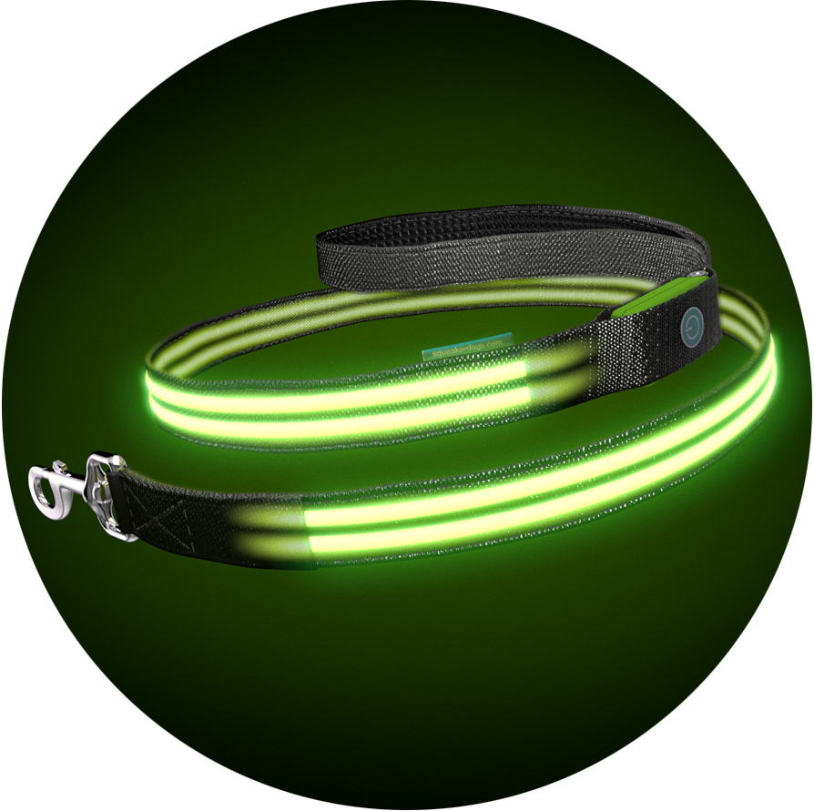 Monster Mash Poochlight™ Collar + Leash Value Combo