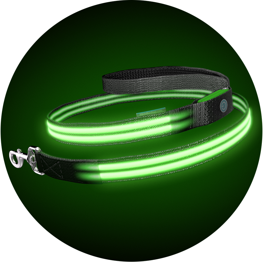 Monster Mash Poochlight™ Light Up Flashing Dog Leash