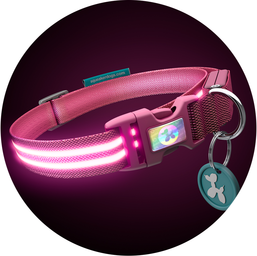Pink Flamingo Poochlight™ Light Up Flashing Dog Collar