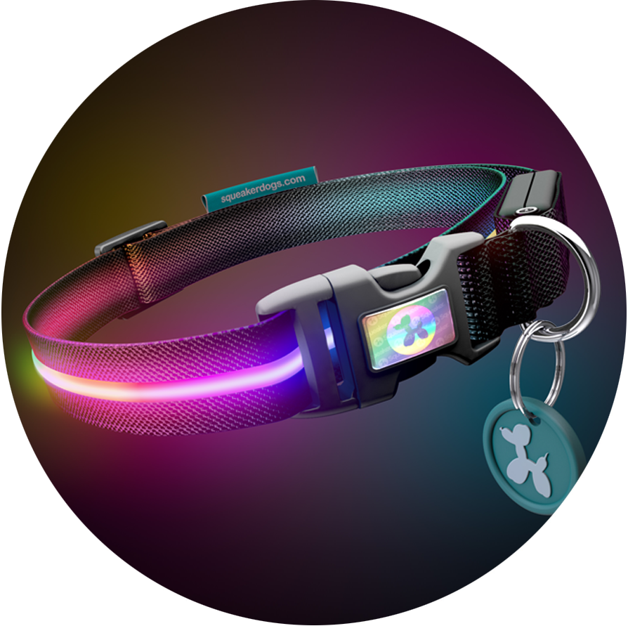 Double Rainbow RGB Poochlight™ Light Up Flashing Dog Collar