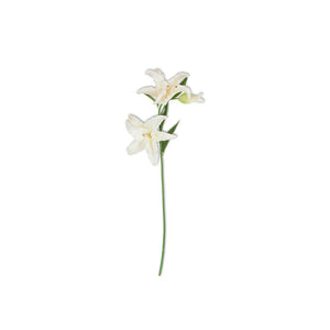 White Lily Stems - One Touch 32""