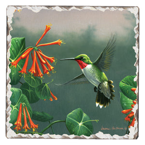 Tumbled Tile Hummingbird Coaster