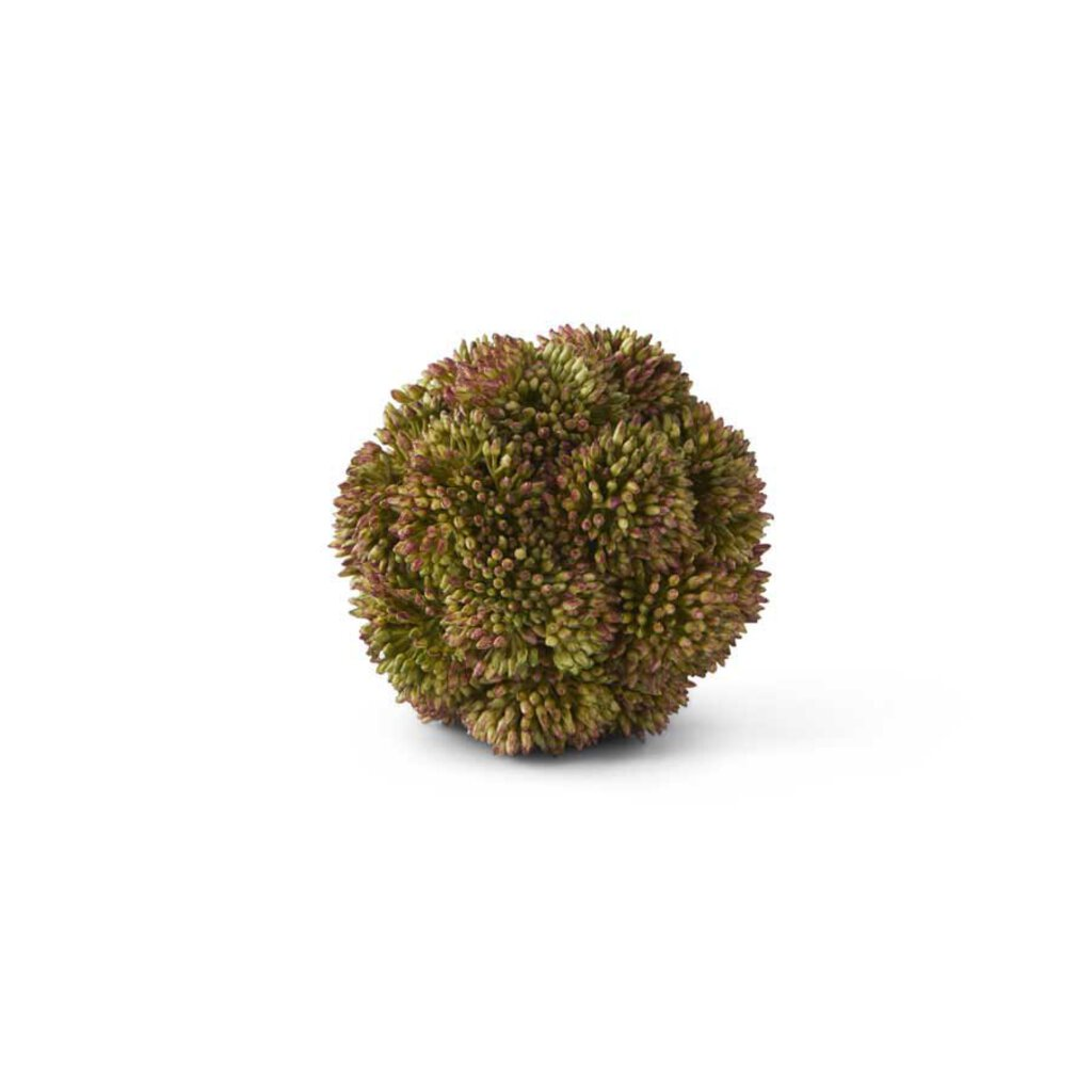 Dark Green Sedum Ball - 4