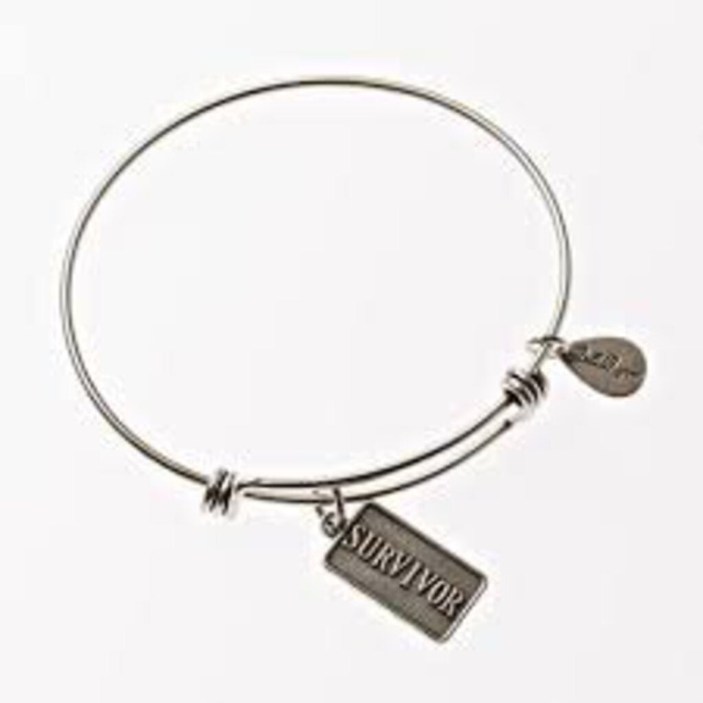 BellaRyann Silver Bangle - Survivor