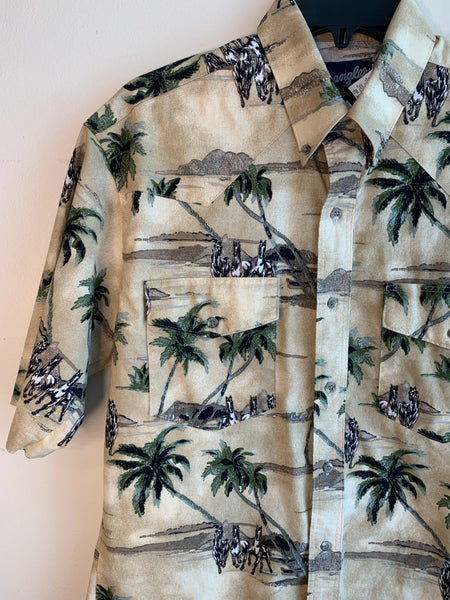 Western Desert Button-Up