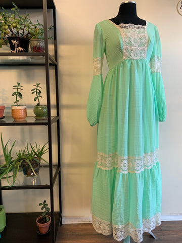 1970s Party Time Prairie Dress