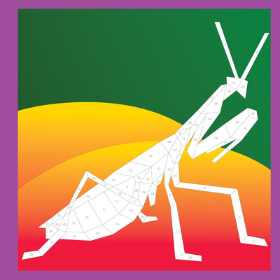 Bugs Paint by Sticker | Workman Publishing