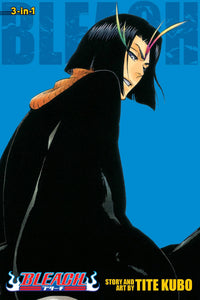 Bleach 3In1 Tp Vol 13