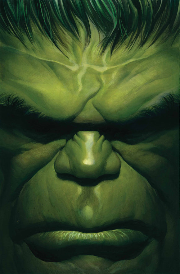 Immortal Hulk By Alex Ross Poster Book TP - Books