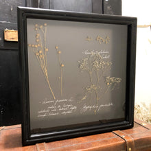 Load image into Gallery viewer, Botanical Black Shadow Box