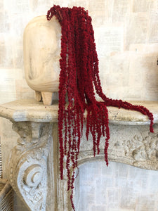 Natural Preserved Amaranthus