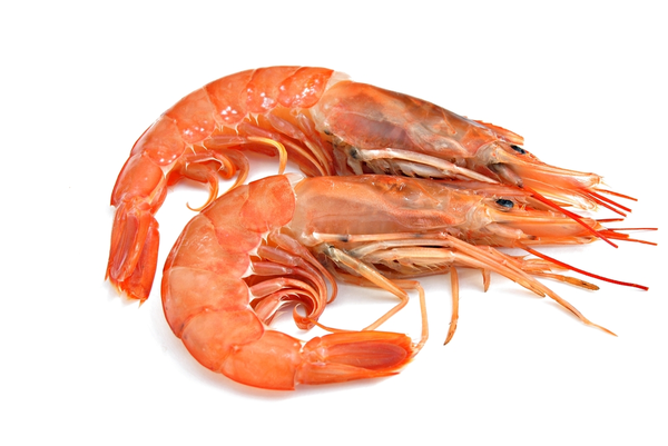Whole Cooked Vannamei Prawn (9/12 per pound) 5kg