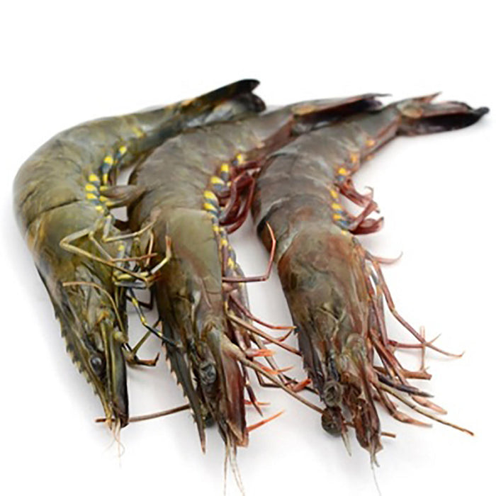 Raw U/10 King Whole Prawn 5kg