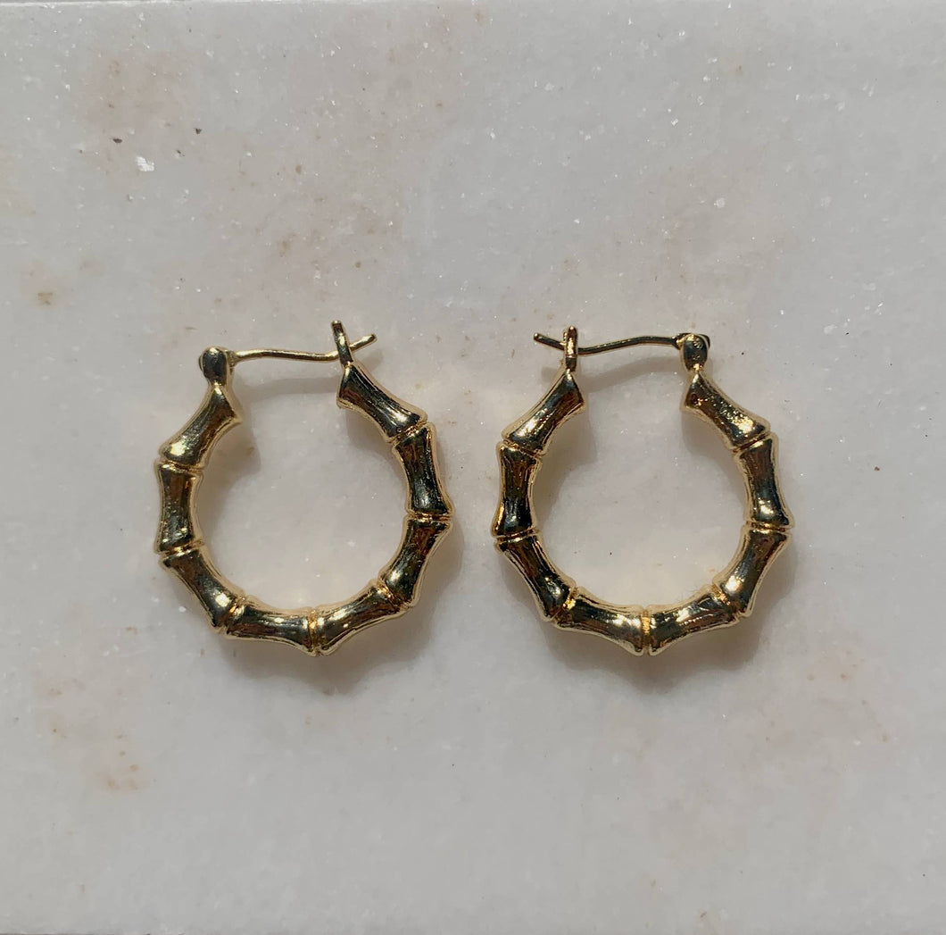 Paradise  18k Gold Filled Hoop Earrings