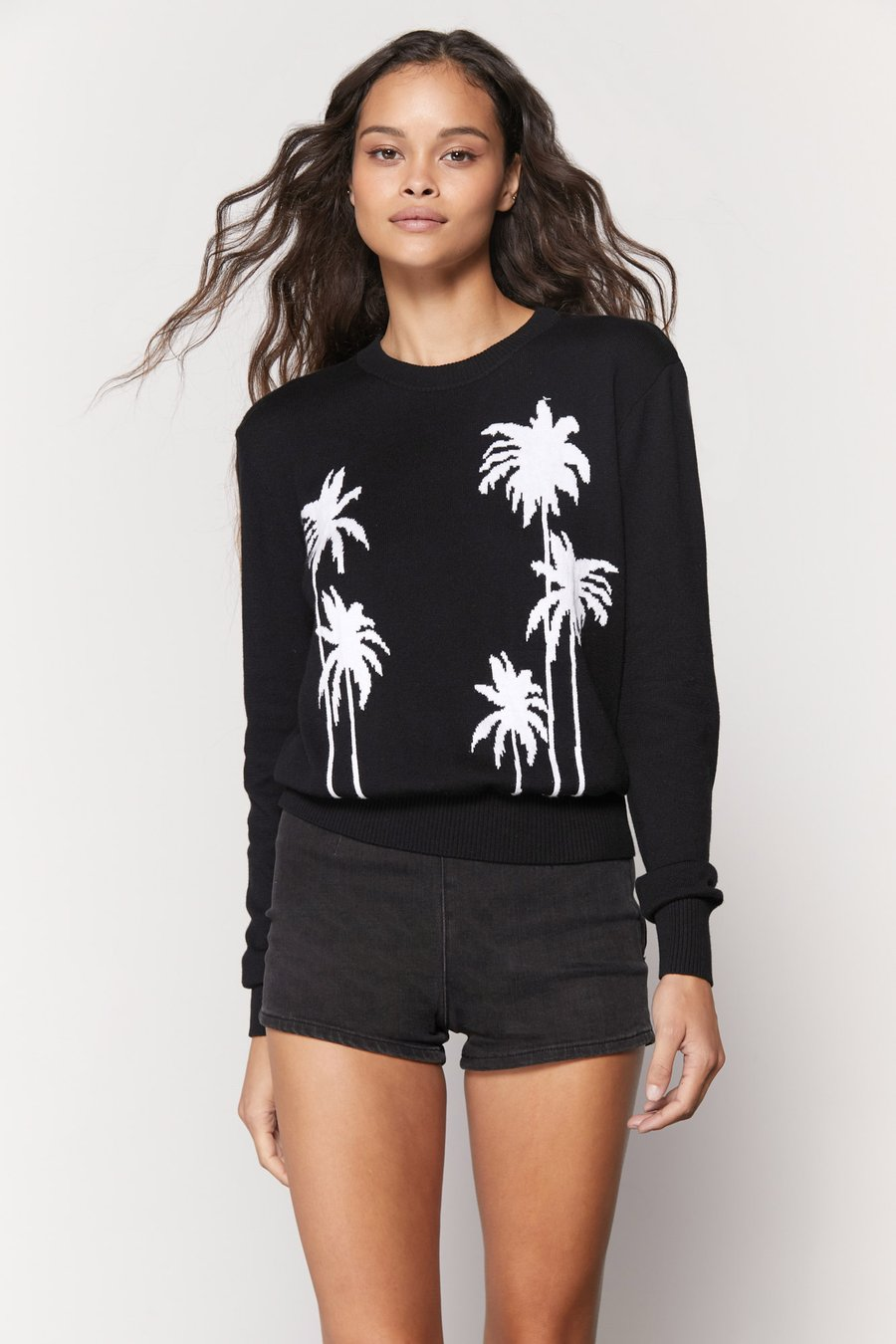 Palms Brooklyn Sweater