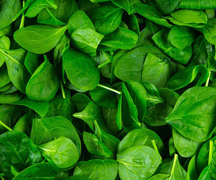 Spinach Baby -  Spray Free 1 Bunch