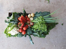 Load image into Gallery viewer, Vegetable -  Seasonal Box for Four