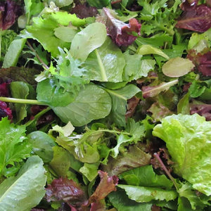 Salad Mix  -  Spray Free