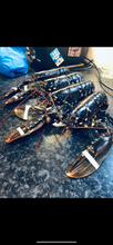 Load image into Gallery viewer, Fresh Lobsters🇮🇪
