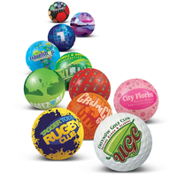 Full Colour Stress Ball Shape