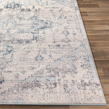 Load image into Gallery viewer, Farmhouse Ankara Pale Blue Rug