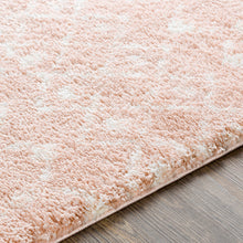 Load image into Gallery viewer, Aliyah Farmhouse Shag Blush & Cream Rug