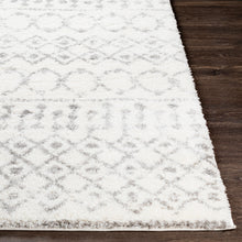 Load image into Gallery viewer, Aliyah Farmhouse Shag Cream & Gray Rug