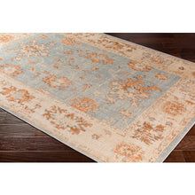 Load image into Gallery viewer, WASHABLE Amelie Aqua & Tan Area Rug