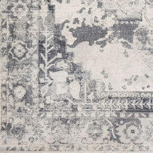 Load image into Gallery viewer, Surya Aura Silk Taupe & Charcoal Area Rug