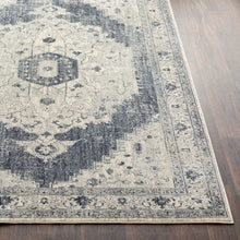 Load image into Gallery viewer, Surya Aura Silk Light Gray & Charcoal Area Rug