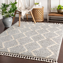Load image into Gallery viewer, Surya Berber Shag Area Rug - BBE-2304