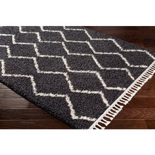 Load image into Gallery viewer, Surya Berber Shag Area Rug - BBE-2306