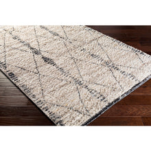 Load image into Gallery viewer, Birch Farmhouse Area Rug in Cream & Charcoal
