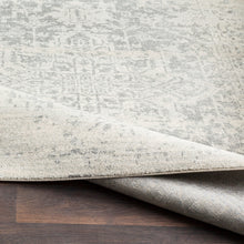 Load image into Gallery viewer, Surya Harput Farmhouse Area Rug - HAP-1024