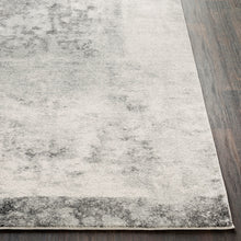 Load image into Gallery viewer, Surya Harput Contemporary Area Rug - HAP-1059