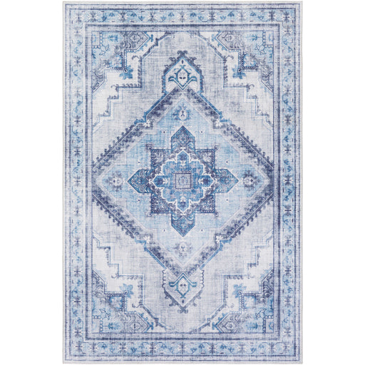 Iris Farmhouse Ice Blue & Navy Area Rug