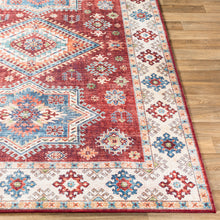 Load image into Gallery viewer, Iris Farmhouse Dark Red & Ivory Area Rug