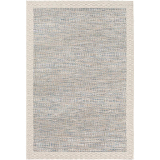 Santa Cruz Blue & Taupe Indoor/Outdoor Rug