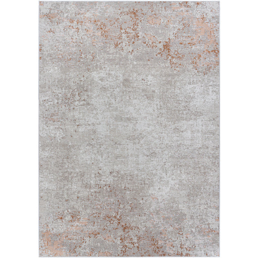 Pet-Friendly Costa Mesa Taupe & Terracotta Area Rug
