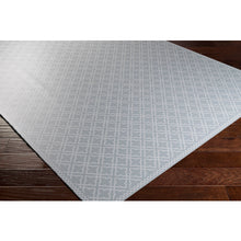 Load image into Gallery viewer, Pet-Friendly Vinilo Light Gray & White Area Rug