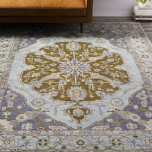 Load image into Gallery viewer, Luxury Zeus Light Gray & Charcoal Rug