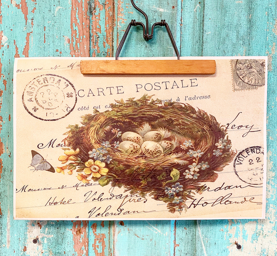 Vintage Inspired Carte Postale Bird Nest Poster