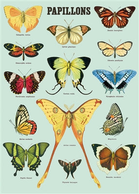 Papillons Vintage Reproduction Poster