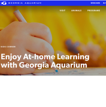 Load image into Gallery viewer, Georgia Aquarium