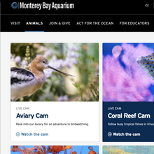 Load image into Gallery viewer, Monterey Bay Aquarium