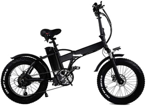 FIRTH ION FAT WHEEL E- Bike 750W 2 year warranty UK Supplier