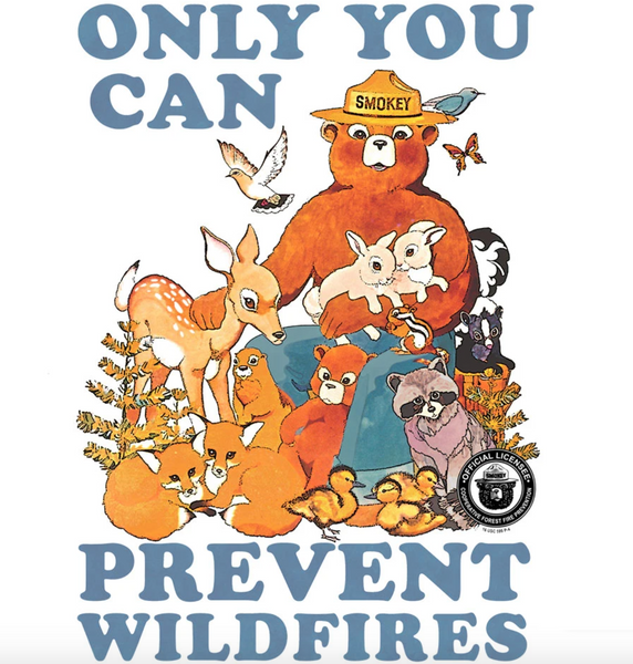 'Only You Can Prevent Wildfires' Graphic Tee