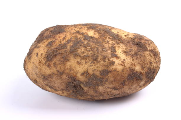 Potatoes New 750g